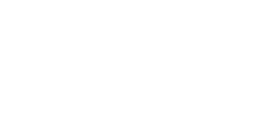 Lee's Sheet Metal (LSM) Logo